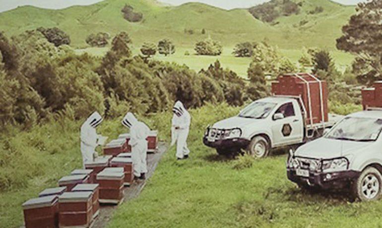 Пандемия коронавируса стимулировала спрос на новозеландский мед
