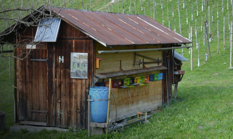 Дом с пчелами