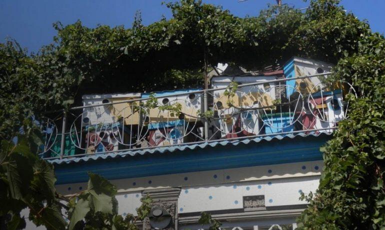 Пасіка на балконі