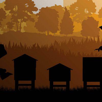 Розповіді бджолярів. Частина 2