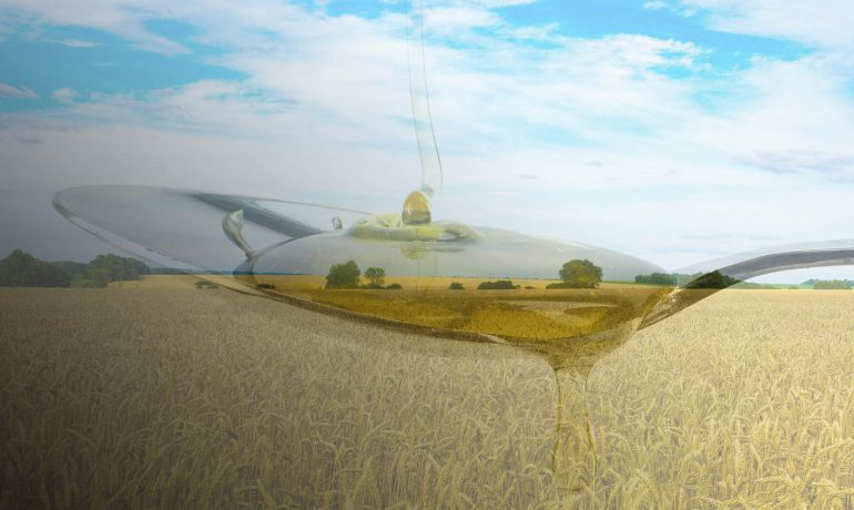експорт меду Україна