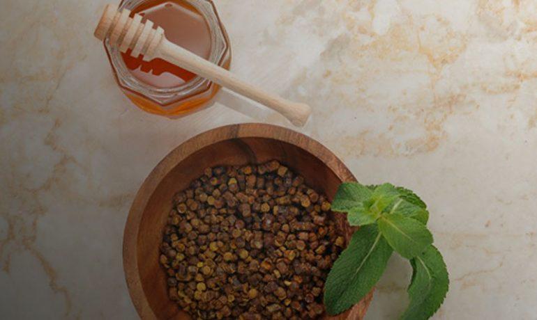 пчелиный хлеб перга