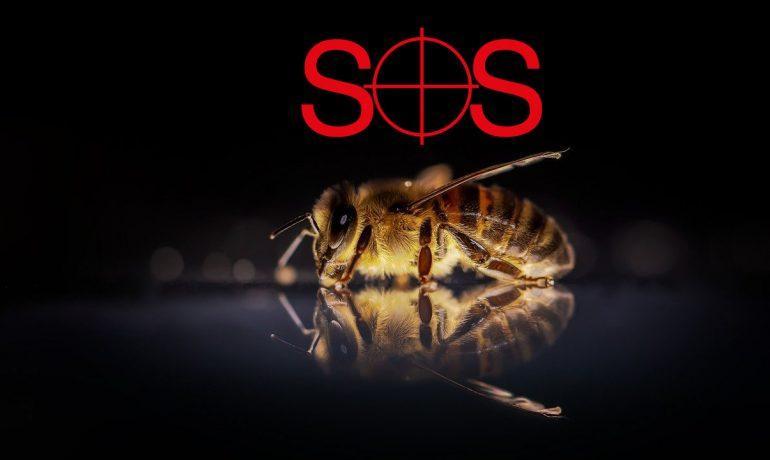 пчела sos