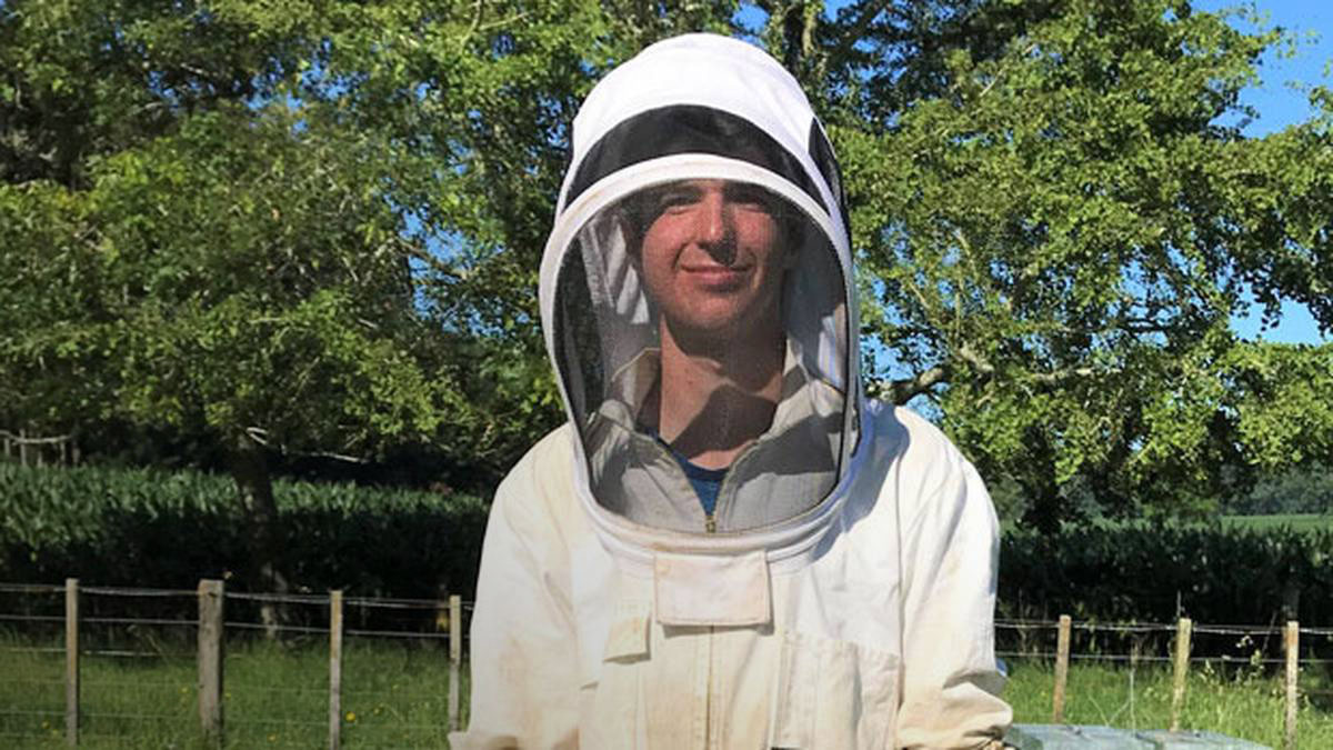 Молодим бджолярам у Новій Зеландії платять стипендію