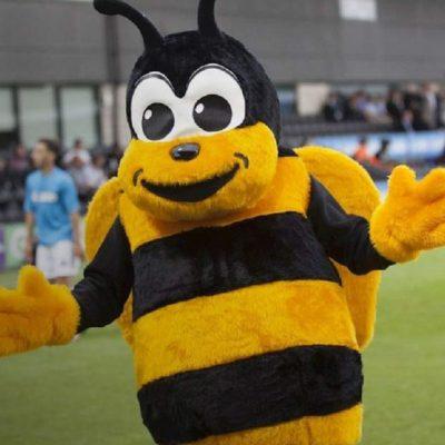 Агресивні бджоли зірвали футбольний матч