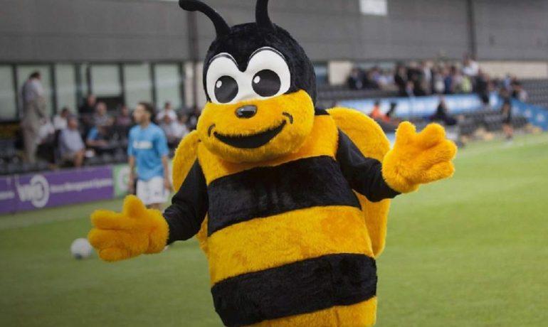 Пчелы футбол